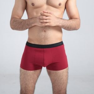High class dark red cotton boxer with black belt